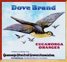 Rancho Cucamonga San Bernardino Dove Orange Citrus Fruit Crate Label Print