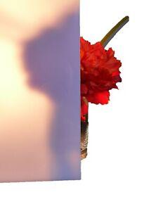 Polycarbonat Platte Zuschnitt Milchglas (weiß Opal) 2mm LD30% (26,00€/m²)