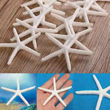 12pcs White Beautiful Finger Starfish Beach Wedding House Crafts Decor Toys Gift