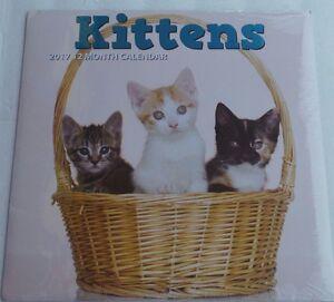 """KITTENS 2017 CALENDAR 12 MONTH 12"""" X 12"""" CATS FELINE"""