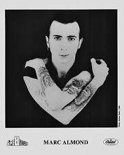 """Mark Almond 10"""" x 8"""" Photograph no 1"""