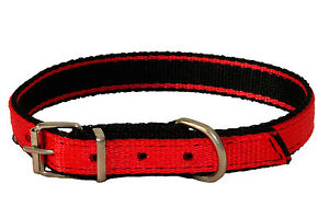 RED Strong NYLON Dog Puppy Collar BLACK PADDED Web