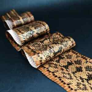 Elaphe Carinata Snake Skin Leather Snakeskin Craft Supply Unbleached Brownish