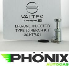 Valtek Rail 6er Reparatur-Set Typ 30 Autogas LPG KME