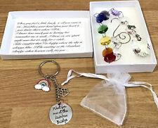 Pet Memorial Loss Initial Paw Sun Catcher & Keyring Rainbow 🌈 Bridge Poem Gift