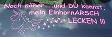 Aufkleber Autoaufkleber Einhorn/ EinhornARSCH Lecken!!! Heckscheibe 27cm x 80cm