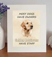Golden Retriever 10x8 Free Standing Picture/Print, Fun 'STAFF' Quote Lovely Gift