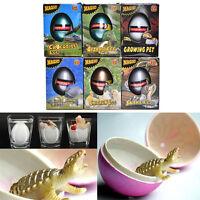 1 Pcs Water Hatching Egg Box Large Expansion Animal Egg Kids Educational Toy Hot