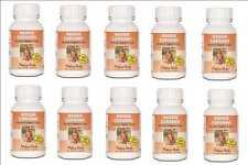 Hoodia 100% Pure hunger suppressant weight loss 900 x 350mg Caps Bulk Buy Medico