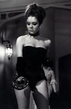 Diana Rigg Poster 24in x 36in