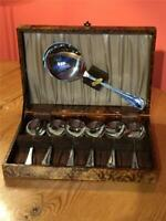 Vintage Stainless Steel Chrome Plated Dessert Set 6 Spoons and Server Boxed