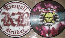 """RARE 12"""" Picture Vinyl LP Die Fäuste hoch - KrawallBrüder oi punk Freiwild"""