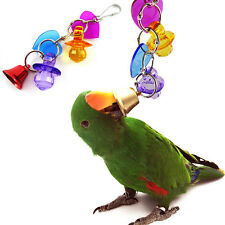 Colorful Acrylic Pet Bird Parrot Bites Peck Cage Cockatiel Budgie Play Toys New