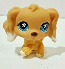 COCKER SPANIEL DOG #748 - Authentic Littlest Pet Shop - Hasbro LPS