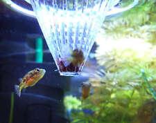 Feeding Cone for Fish x 3 pcs Aquarium Fish Tank Usage for bloodworms daphnia