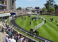 Make Money - Handicap Accumulator -  Horse Racing Betting Betfair System