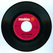 Philippines ALLAN CASTRO You're My Everything OPM 45 rpm Record