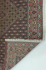 kurdestan SENNEH très bien PERSAN TAPIS tapis d'Orient 3,45 x 2,50