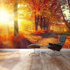 """Wall Mural - Beautiful Autumn Landscape/Scenery of Red Maple Trees - 100"""" x 144"""""""