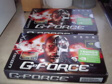 xPert Vision GeForce 7600GS DDR Graphic Cards x2