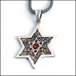 Silver and Gold star of David necklace.