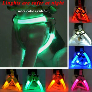 Replaceable Battery Chest Harness LED Pet Dog Glow Flashing Light-up Night NEW