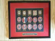 New Framed Eagle Scout Centennial Patch Collection Boy Scouts of America