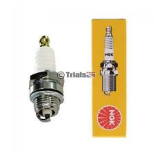 NGK Spark Plug - TRS/Vertigo/Jotogas