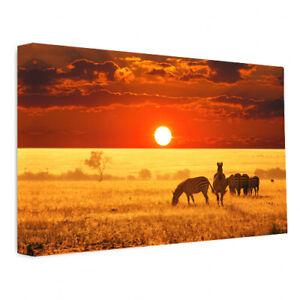 African Zebra Sunrise Lion Nature Wildlife Canvas Wall Art Picture Print