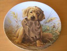 Collector Plate Lynn Kaatz Caught In The Act The Golden Retriever Field Puppies