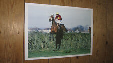 Red Rum Horse Racing Legend Last Fence 1977 New POSTER
