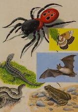 Originale künstlerische Malerei mit Gouache-der Zeit