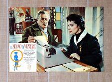 IL SEGNO DI VENERE fotobusta poster Franca Valeri De Sica Risi Typewriter U85