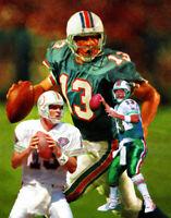 Dan Marino Miami Dolphins Quarter Back QB NFL Football Art Print 03 8x10 - 48x36