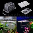 Aquarium Pet Fish Tank Guppy Double Breeding Breeder Rearing Trap Box Hatchery