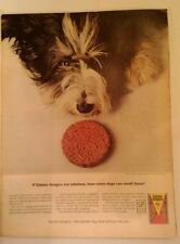Vintage Ad Gaines Burgers Dogfood 1964 - 10.5 x 14 - Color, General Foods, Print
