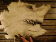 REAL BABY GOAT HIDE tanned leather ANIMAL SKIN taxidermy pelt FUR black white