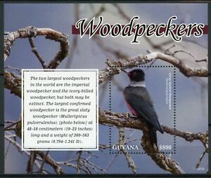 Guyana Birds on Stamps 2020 MNH Woodpeckers Great Spotted Woodpecker 1v S/S
