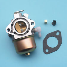 Carburetor for Briggs & Stratton 692684 495780 494886 499074 696461 With Gasket