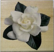 Gardenia Flower  3 lnch square  Wood-mounted Rubber Stamp Inkadinkado