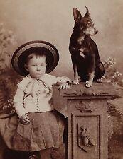 Super 1880 Cabinet Photo - Child in Hat w Manchester Terrier? Dog Dansville Ny