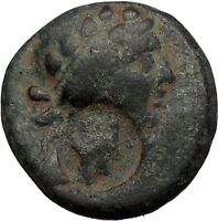 Apameia Seleucis and Pierea 30BC Dionysus Countermark Thyros Greek Coin i56377