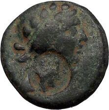Apameia Seleucis and Pierea 30BC Dionysus Countermark Thyros Greek Coin i56377