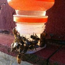 Beekeeping Bee Feeder Water Beekeeper Keeping Equipment Part Beehive Hive Tool