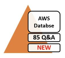 AWS Certified Database - Specialty DBS-C01 Exam 85 Q&A PDF File Only