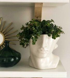 H&M HOME Stoneware Face Head Vase Planter Plant Pot White Brand New in Box