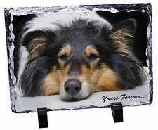 Rough Collie Dog 'Yours Forever' Photo Slate Christmas Gift Ornament, AD-RC3SL
