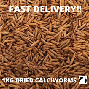 DRIED CALCIWORMS 1KG Wild Bird Food Fishing Bait HIGHER PROTEIN THAN MEALWORMS