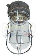 Vapor-Proof Walk-In Box Light Fixture Globe w/Guard