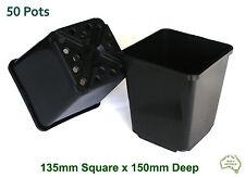 135mm Square Black Plastic Pot x50